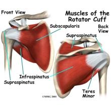 shoulder-pain-explained